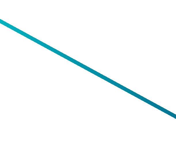 BIG HONZO
